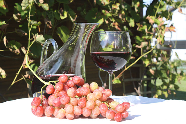 Fispal Food Service receberá espaço voltado para vinhos