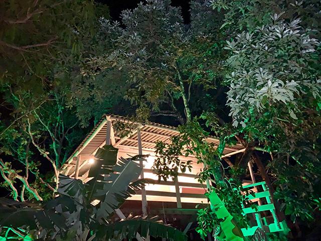 Casa na árvore para hospedagem é inaugurada em Pirenópolis (GO)