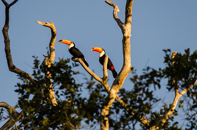 Mato Grosso do Sul recebe programa Investe Turismo