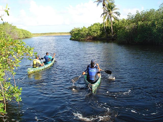 Tivoli Ecoresort Praia do Forte promove passeios de conscientização ambiental