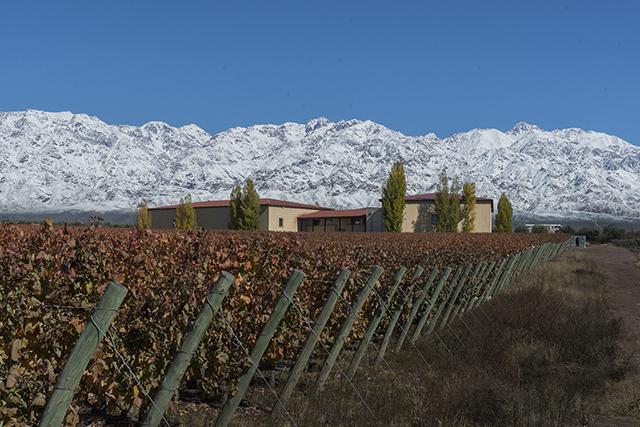 1ª The Cigar & Wine Tour, em Mendoza, terá degustação de charutos e vinhos