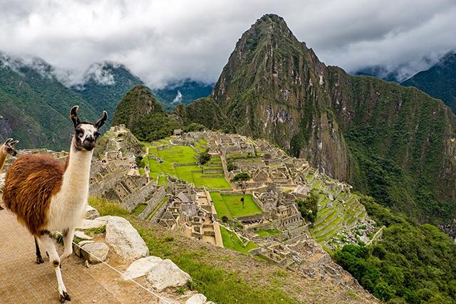 Parceria Interamerican e Mabrian leva Big Data à América Latina