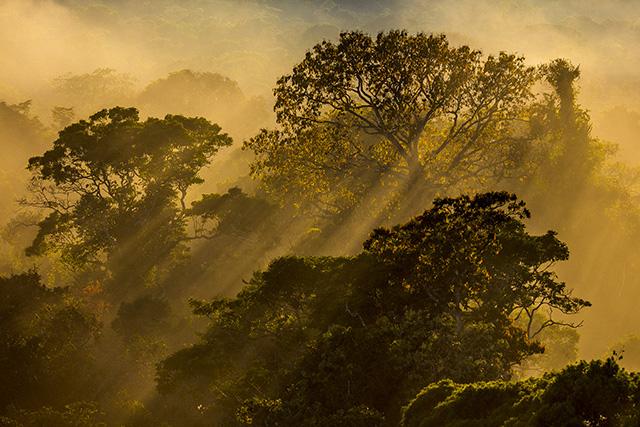 Hotel no Sul da Amazônia venderá fotos da natureza em prol de famílias carentes