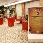 Brinquedos Estrela e Grupo Royal Palm oferecem experiências para pais e filhos