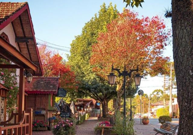 Seis motivos para visitar Monte Verde no outono
