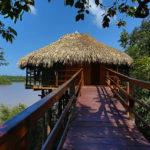 Juma Lodge terá torre de observação com vista para a floresta amazônica