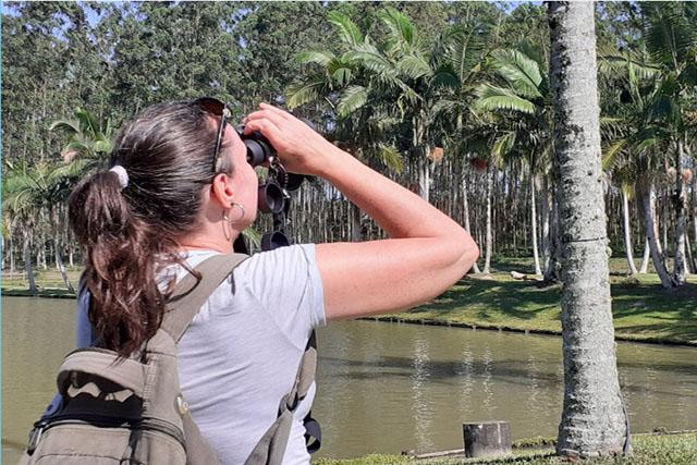 Roteiro de Observação de Aves será lançado na Costa Verde & Mar